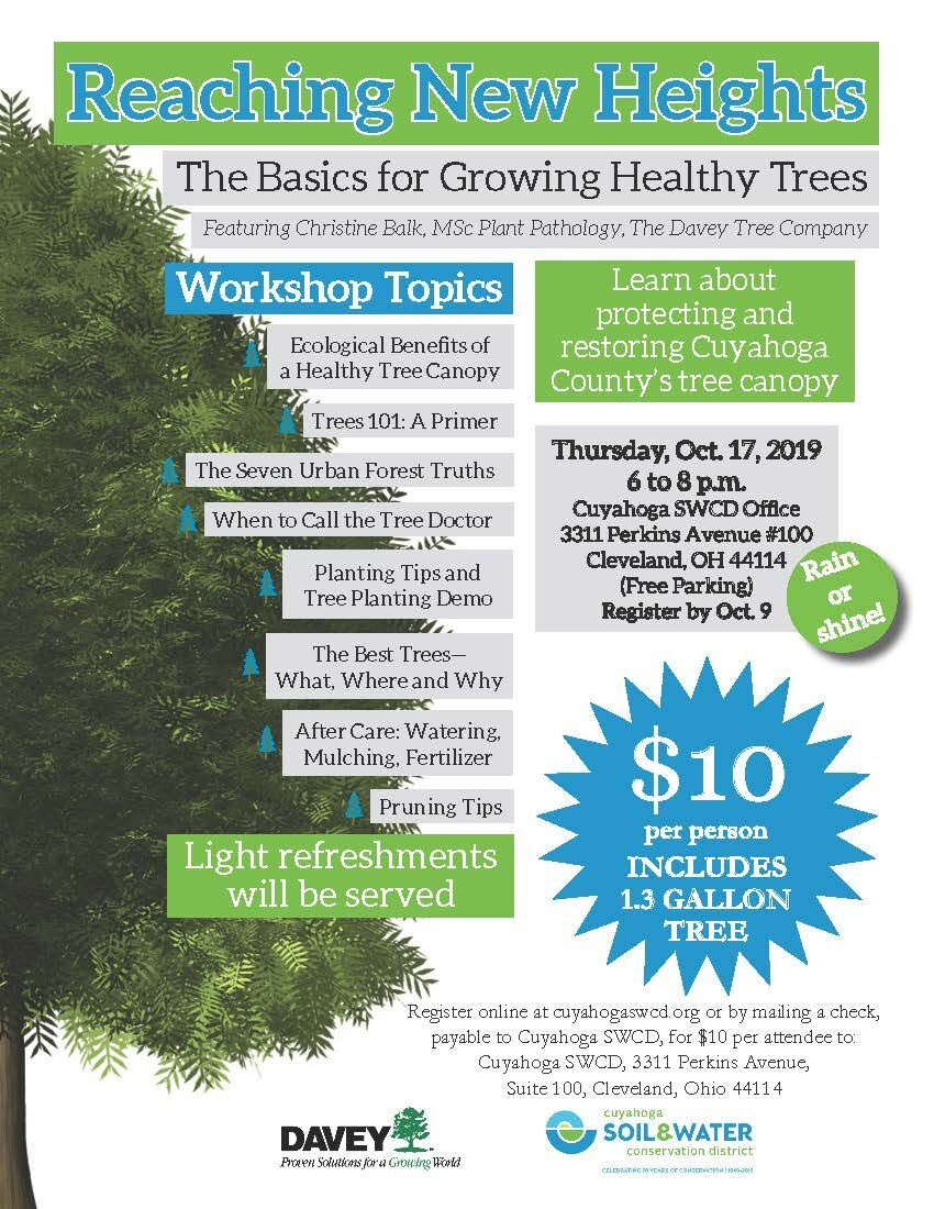Growing Healthy Trees